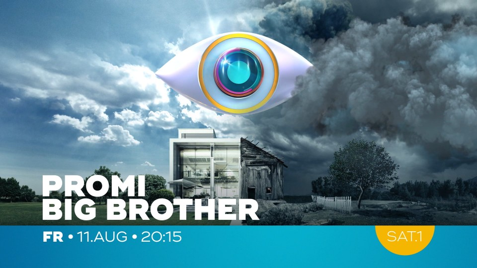 PromiBigBrother_C_